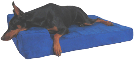 Blue Micro Modern pillow dog bed