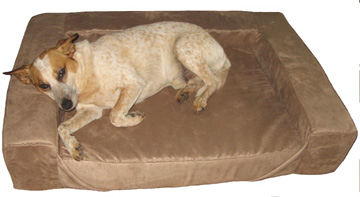Comfort Den Dog Bolster Bed Gus