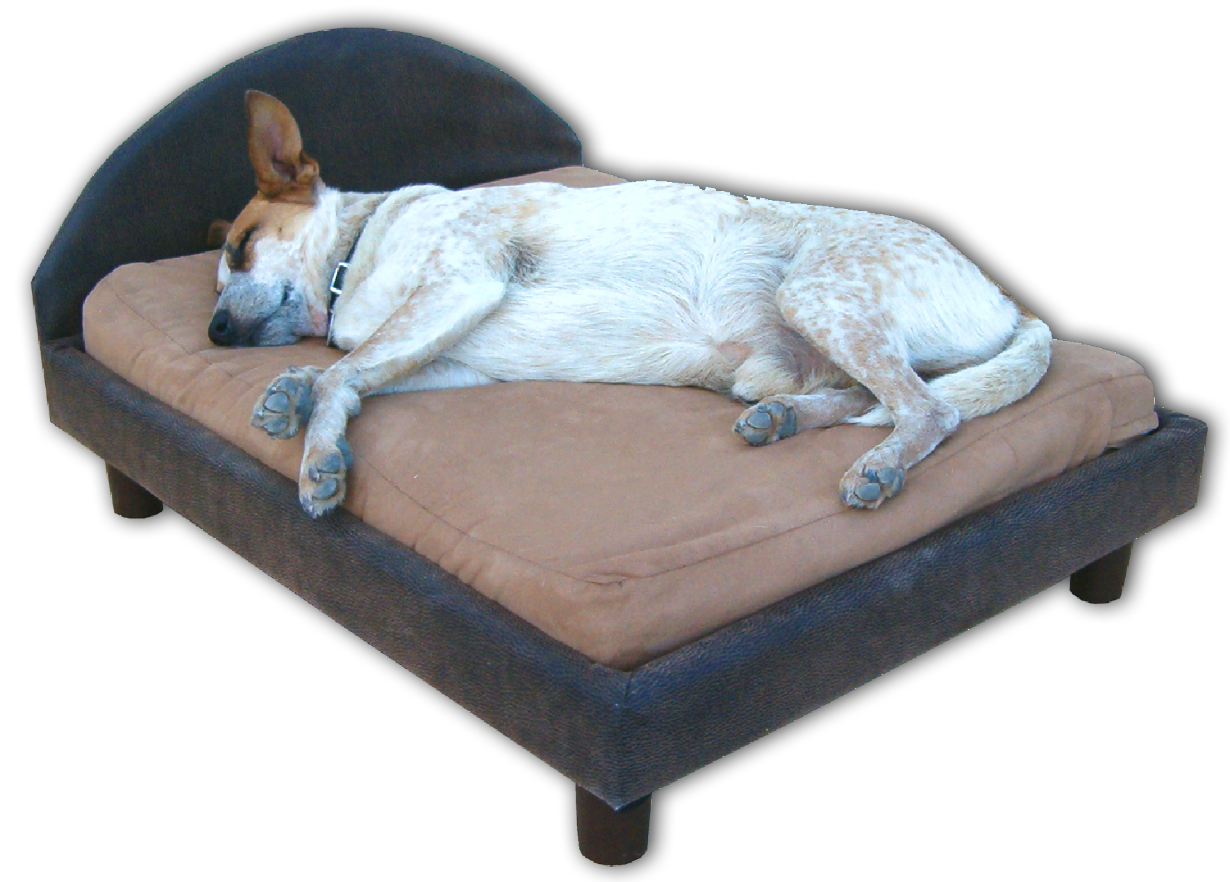 Orthopedic Memory Foam Dog Beds