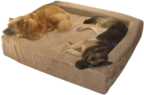 dog beds comfort nest