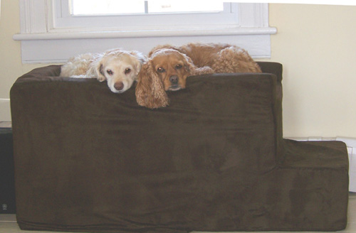 Big Dog Beds Customer Pictures