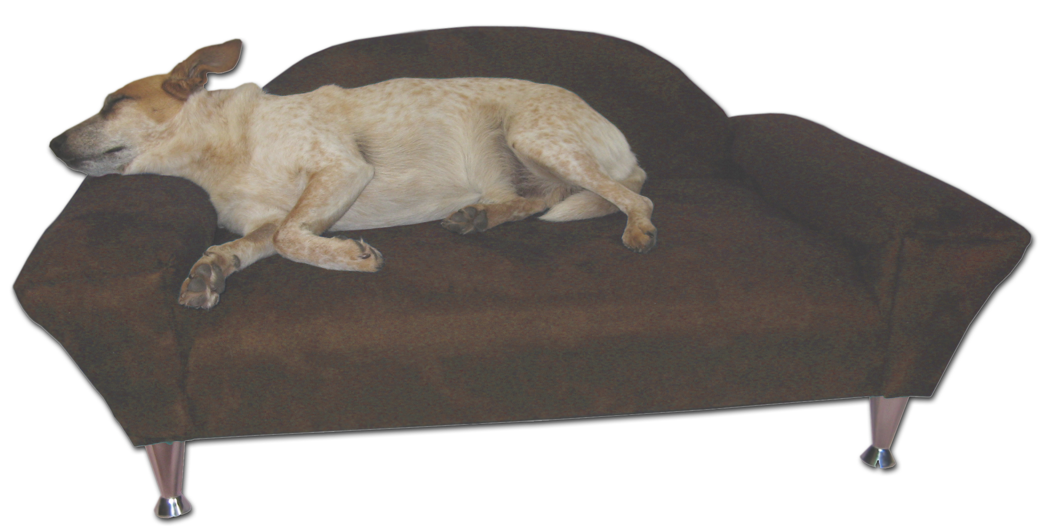 Strong Dog Bed On Sale