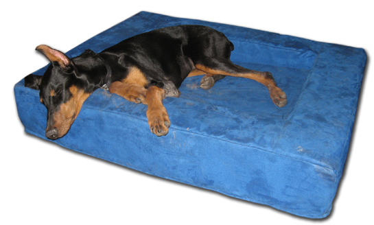 dog bolster bed comfort nest