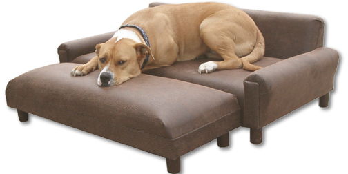 pet furniture, dog sofas, dog couches