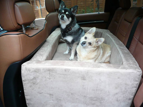 Lucy and Ethel on their custom auto den dog bed