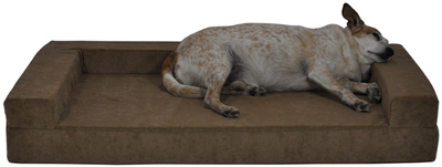 One Piece Comfort Den Dog Bolster Bed Gus