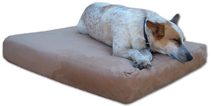 gus orthopedic dog bed
