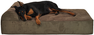 Preferred Comfort Napper pillow dog bed